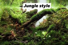 Jungle-style-2