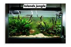 Jungle-style-Islands
