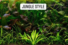 Jungle-style