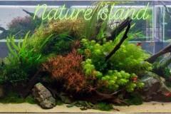 Natural-aquasape-middle-island