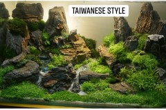 Taiwanese-style-aquascaping-4