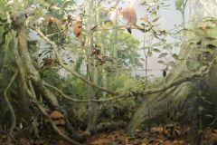 Condo-forest-diorama-aquascaping-inspiration