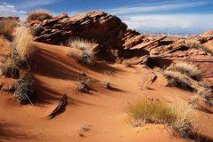 rocky-desert-landscape