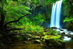 waterfall-amazon-nature-body-of-water-rainforest-watercourse