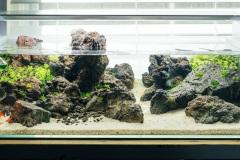 1_Black-Lava-Rocks-aquascape