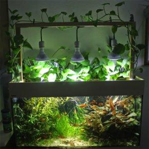 Lighting aquarium