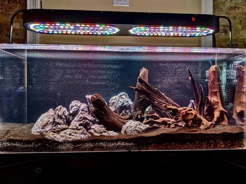 75g aquascape finished without aquarium plants