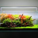 ADA S-series aquarium light