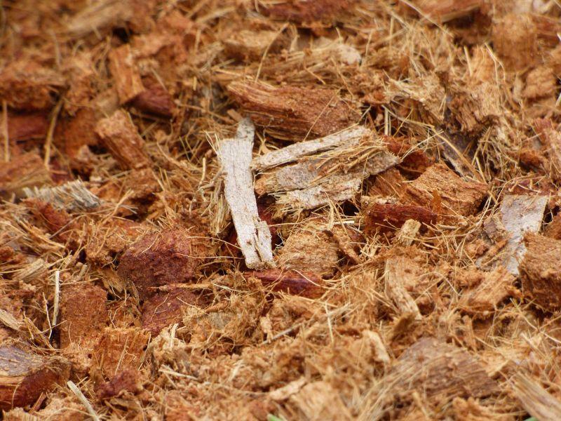 coconut coir mulch aquarium substrate