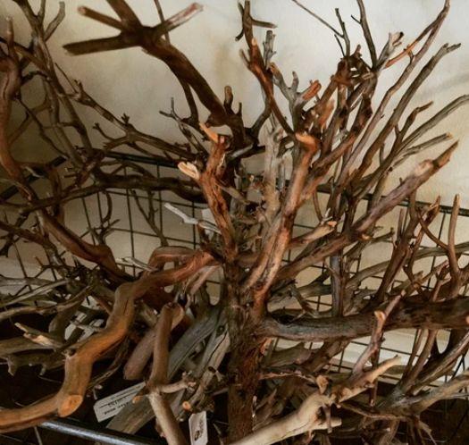 various aquarium driftwood