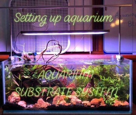 Aquarium Substrate System – Aquascaping 20 gallons long aquarium (PART 1)